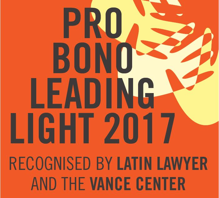 Pro Bono Leading Light 2016